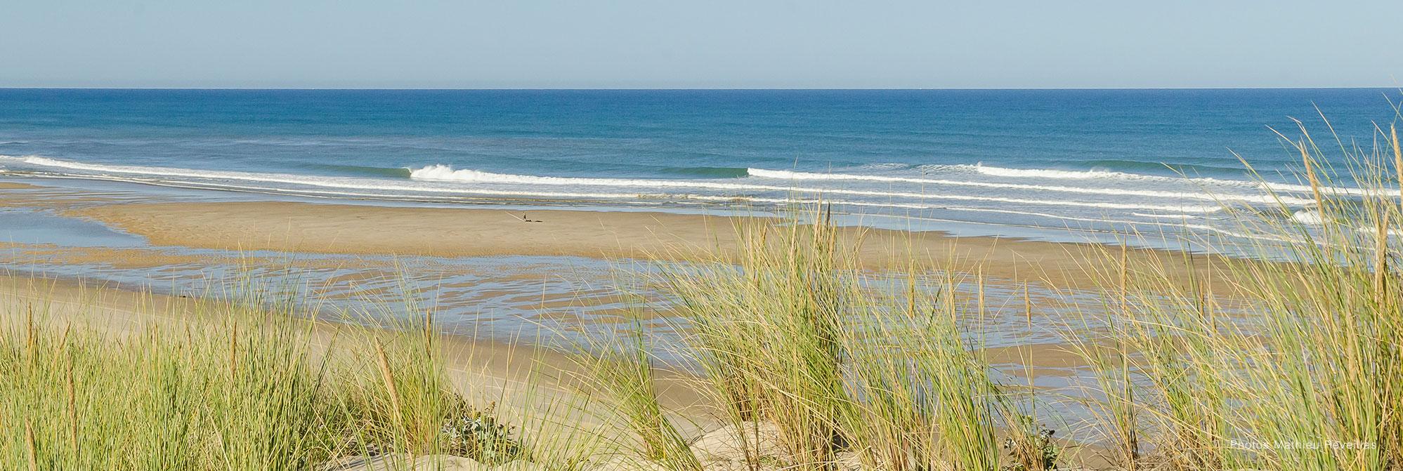 pointe espagnole coco surf